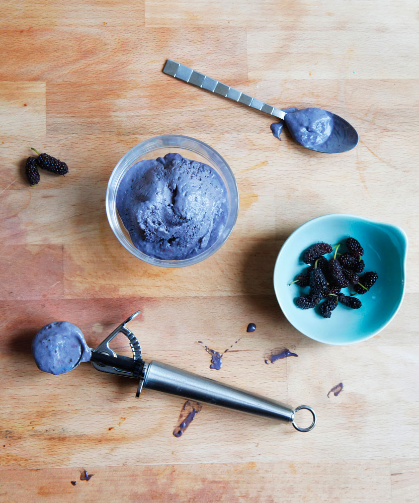 Mulberry ice cream | Freckle & Fair