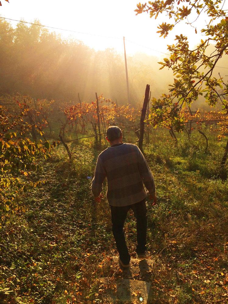 Ca'Bruzzo winery