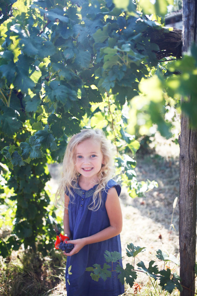 Salvan winery grape stomp