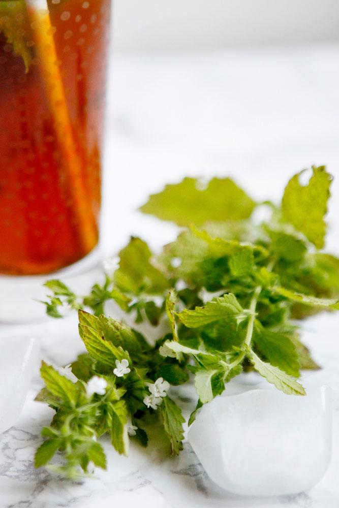 Iced Moroccan mint tea | freckleandfair.com