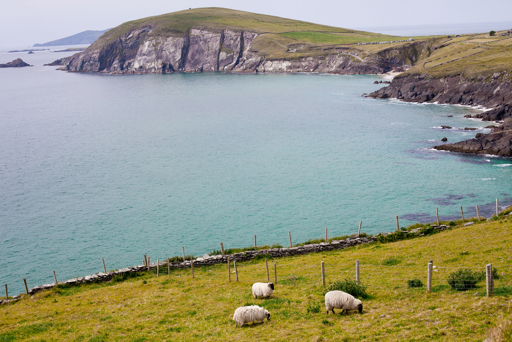 Slea Head Viewpoint on the Dingle Peninsula