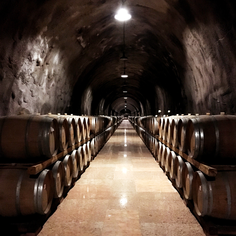 Rocco Sveva winery