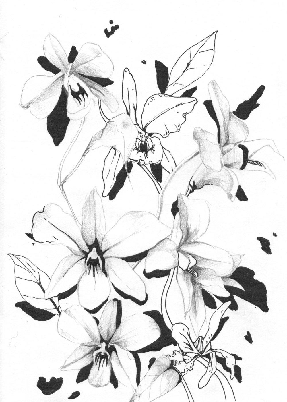 tropflower002.jpg
