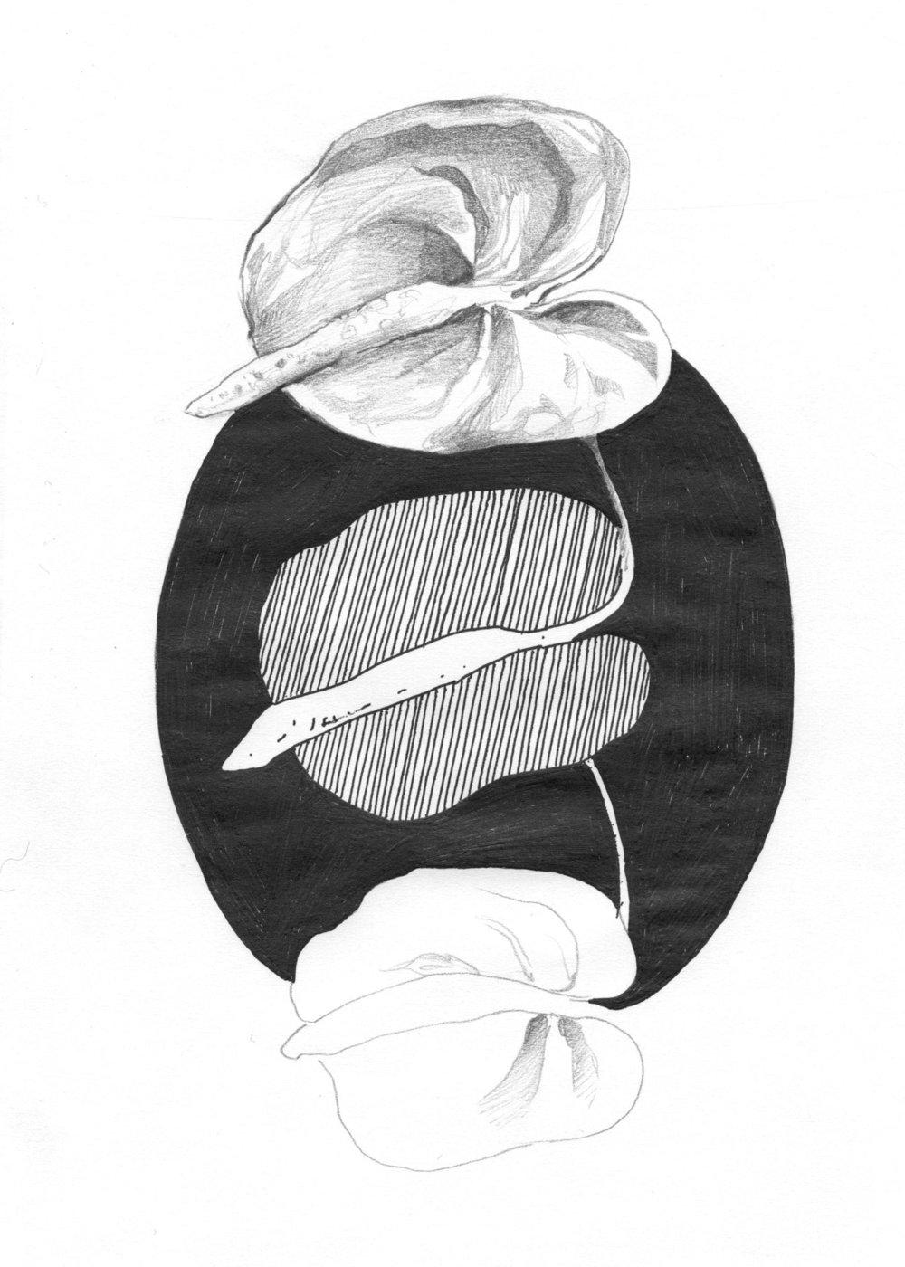 tropflower004.jpg