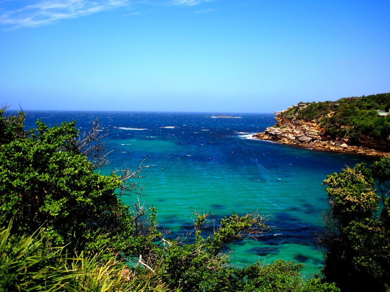Sydney or Hawaii?