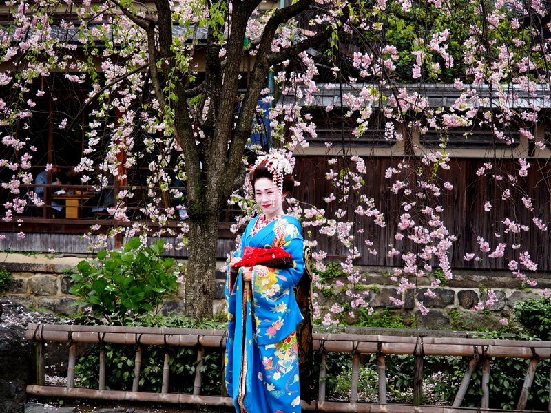 Our guide told us this was actually a tourist, not a real Geisha