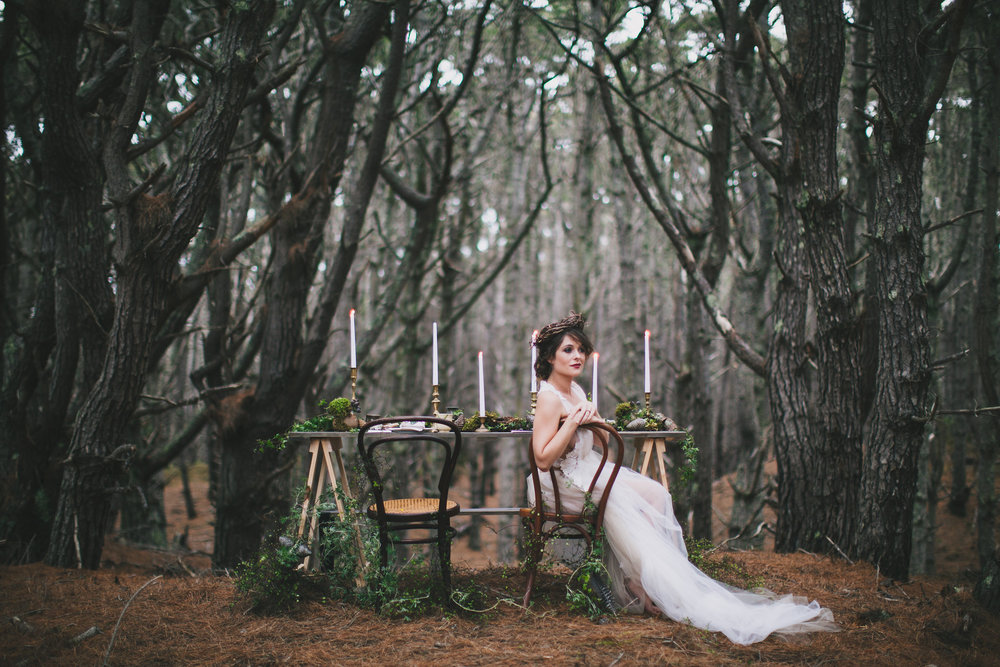 Firebird styled shoot