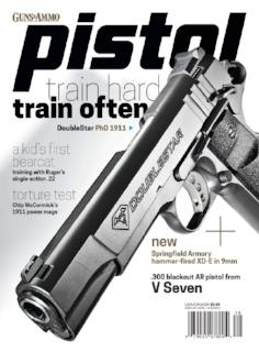 Pistol 17.jpg