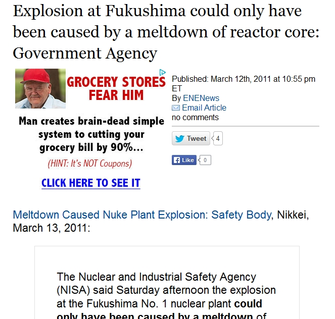 1 Explosion at Fukushima could only have been caused by a meltdown of reactor core Government Agency.jpg
