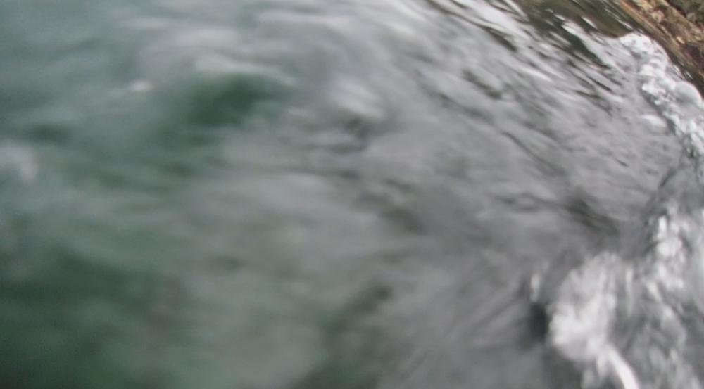 underwater langara island 2 (161).jpg