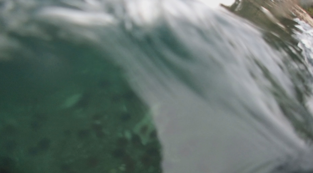 underwater langara island 2 (162).jpg