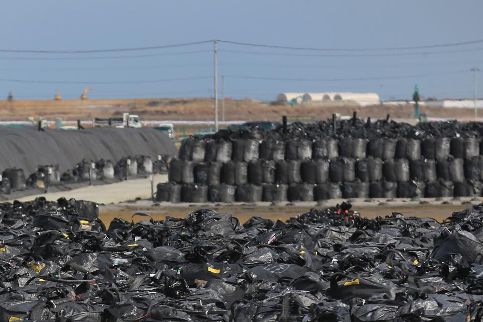 Fukushima bags good for 2 years  will have to survive 20 years