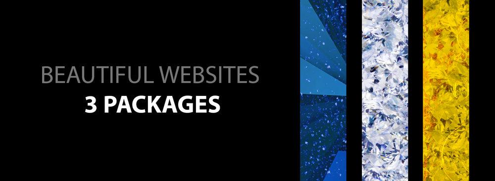 3 web plans.jpg