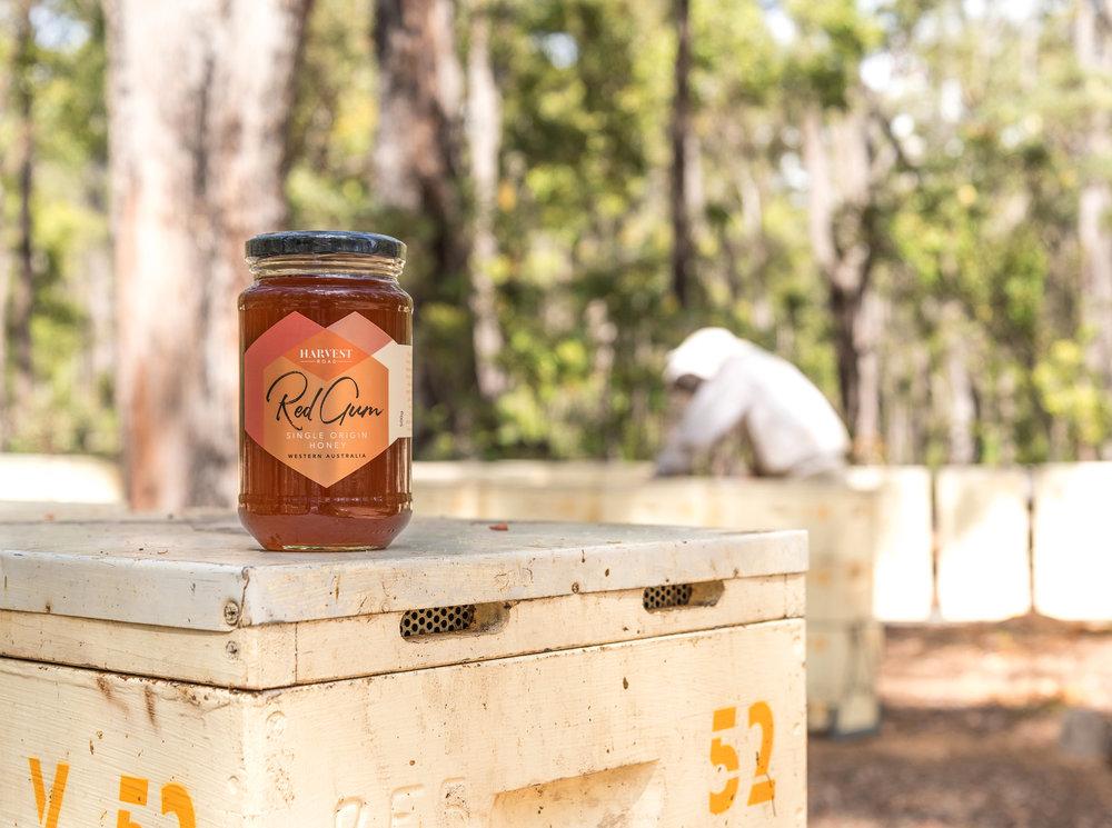 Harvest Road Honey hero.jpg