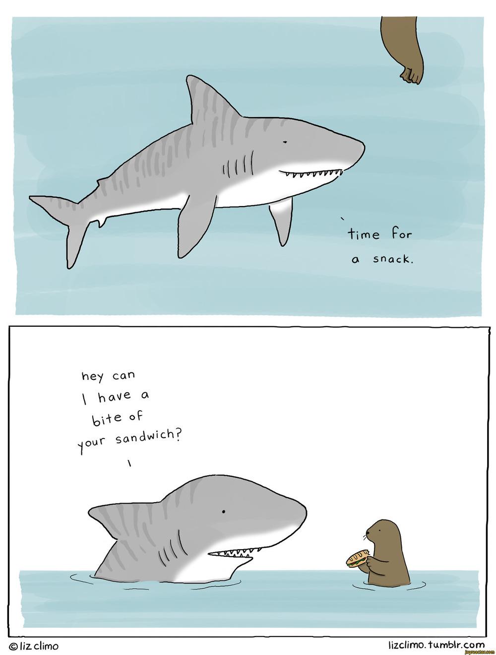 shark-snack-lizclimo-comics-1454157.jpeg