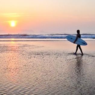 """¿Quieres aprender a hacer surf o mejorar tu nivel técnico? Ven a este singular campamento de surf donde, además, podrás participar en nuestro proyecto medioambiental """"El bosque de los surfistas"""" y plantar tu propio árbol."""