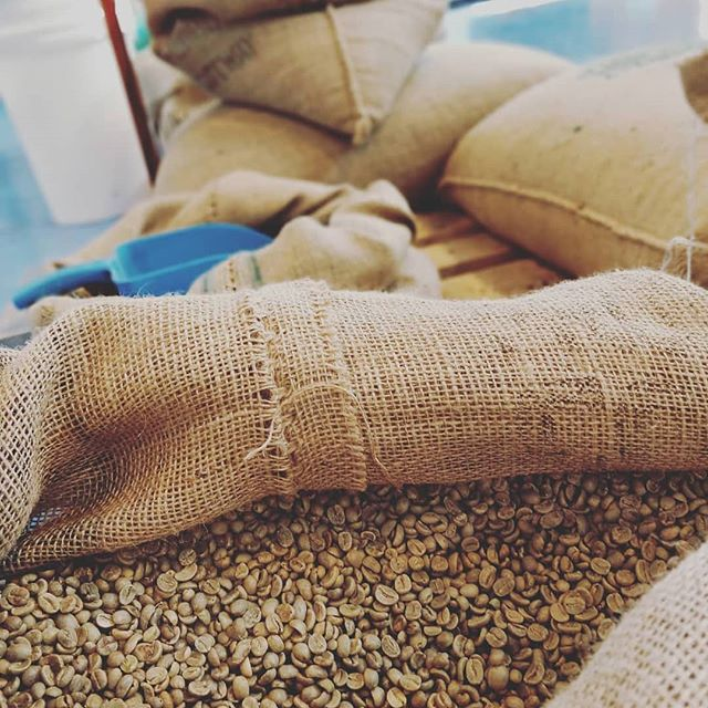 A fantastic cup of UE coffee all starts with quality  green coffee beans that are then roasted to perfection #uecoffeeroasters #trueartisancafe #coffee #roastingcoffee #butfirstcoffee #coffeetime