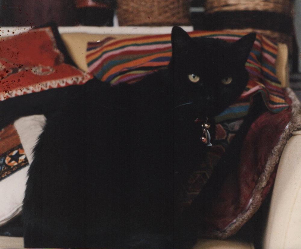 Twiggy, 1995 ish