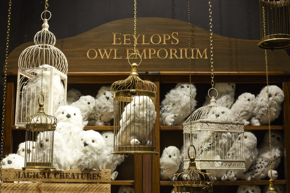 Propability, Hamleys, Nobel, Eeylops Owl Emporitum, Harry Potter, Window Display .jpg