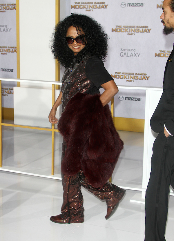 diana-ross-The-Hunger-Games-Mockingjay-Part-1-LA-Premiere.jpg