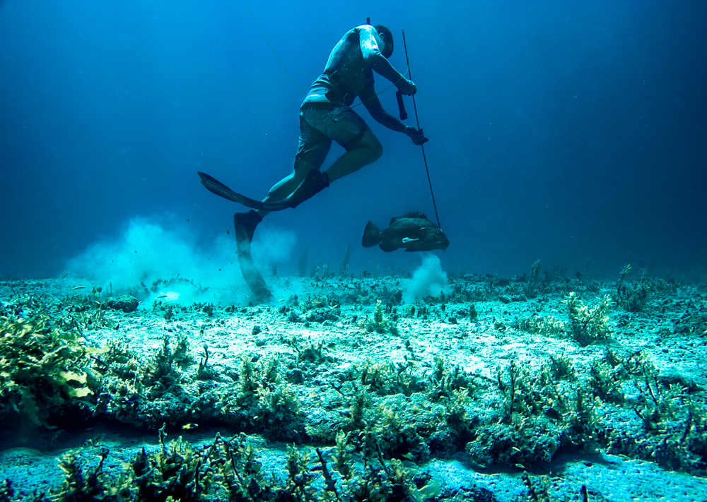 Bahamas -331.jpg