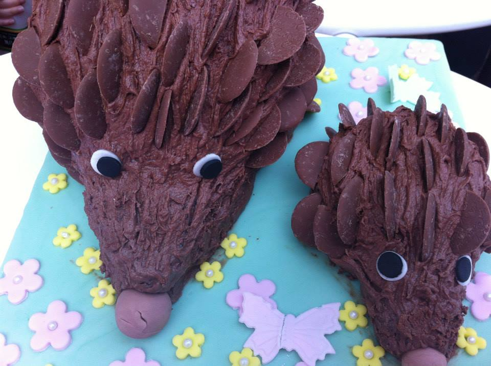 Guess the weight of the hedgehog cake