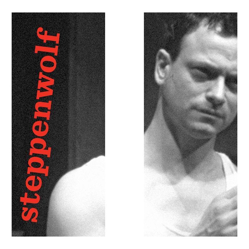 Steppenwolf_banner_Sinise.jpg