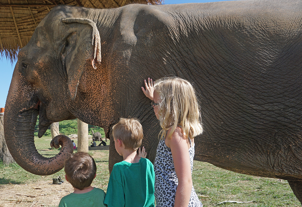 Tatum and her brothers meeting an elephant in Chiang Mai, Thailand.