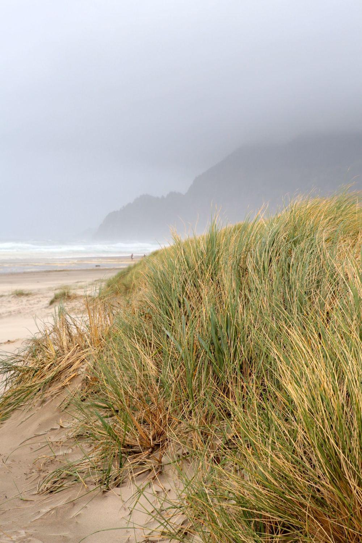 manzanita-dunes-beach.jpg