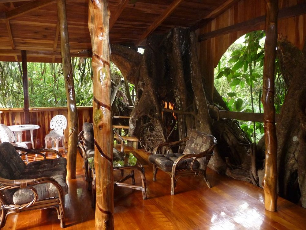 treehouse 2.jpg