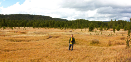 The beautiful Yellowstone National Park