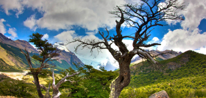 Hiking in the wilderness of Patagonia.