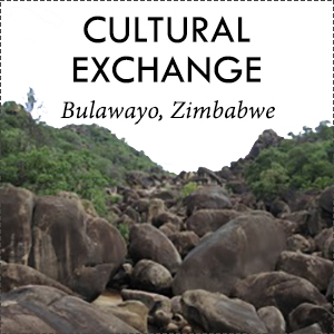 zimbabwe_button.jpg