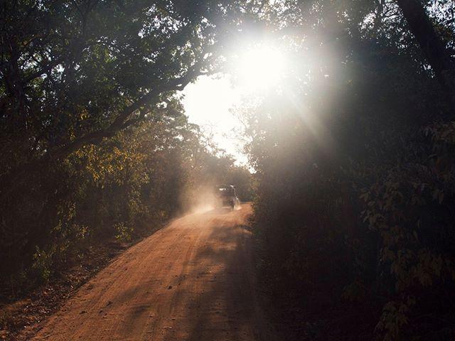 Exploring in the Sri Lankan jungle tracks looking for surf #srilanka #landrover #jungle #explore #exploring #surf #travel #car #adventure