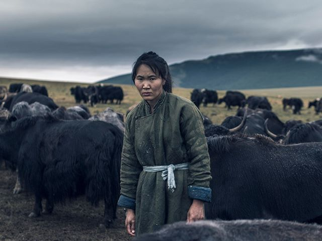 From the project 'living with Nomads' shot in Mongolia, i had an amazing time living with the nomadic herders and learning about their way of life for more than just a fashion label @houseoftengri #mongolia #nomads #herder #yak #sustainable #fashion #portrait #aop #awards #landscape #travel #adventure #photographer #ulaanbaatar