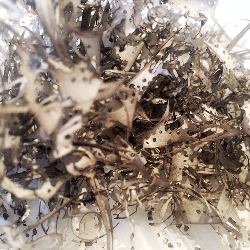 Shreds of protective tape