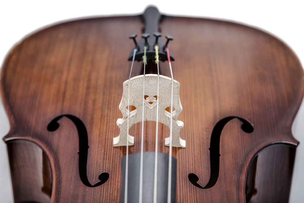 cello above  symetrical.jpg
