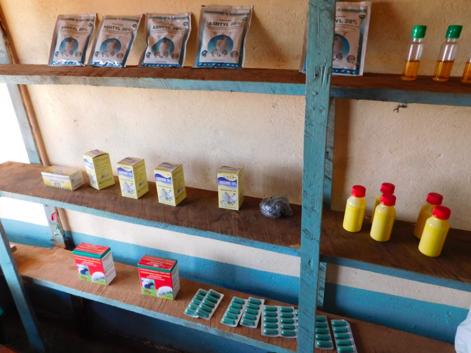 Medications and vaccines line the shelves of Grace's vet shop shelves. She can order additional items on request and drives products requiring refrigeration up from Lilongwe where the regular power cuts that plague the country happen less frequently and are backed up by generators.