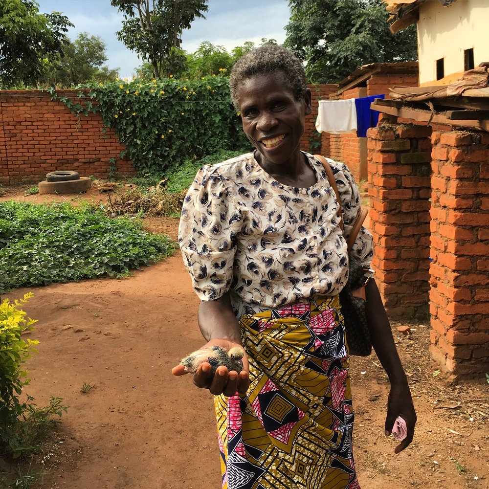 Lucia shows off a baby pigeon raised as part of a large scale, women-run poultry farming initiative near Lilongwe.