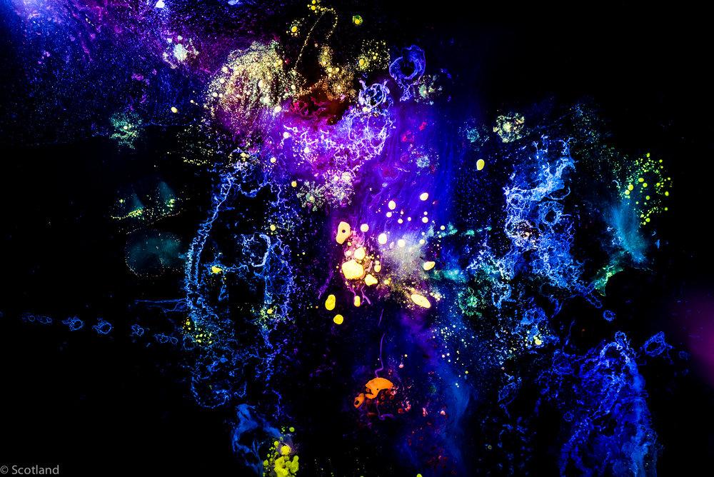 micro_cosmos_Scotland-2.jpg