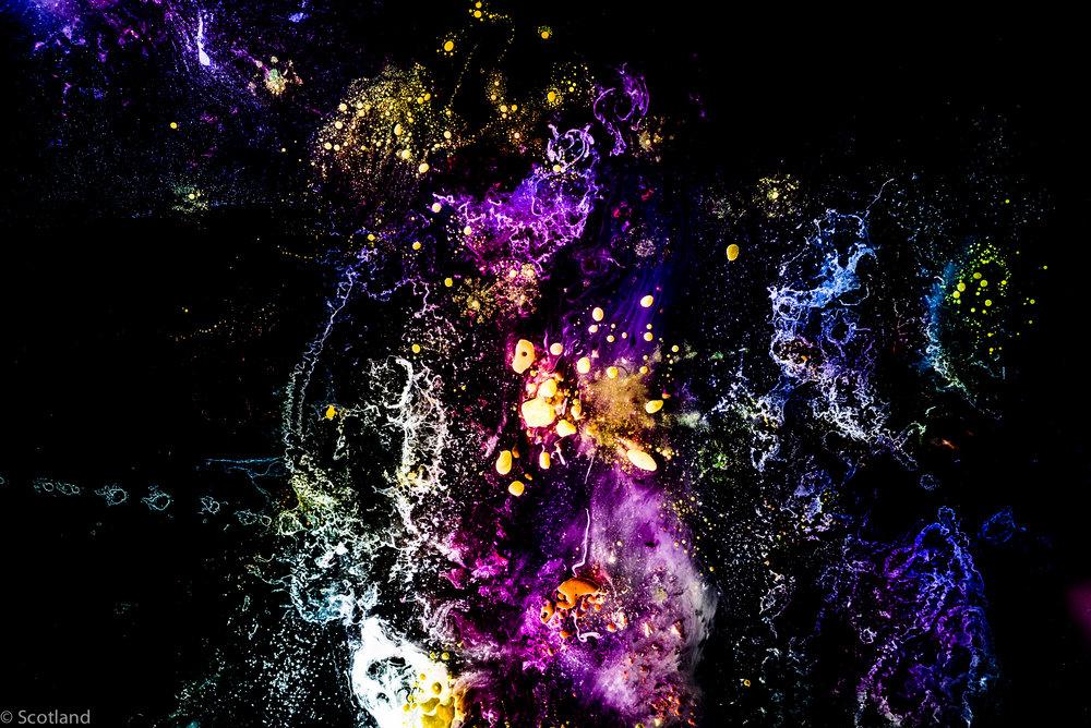 micro_cosmos_Scotland-3.jpg