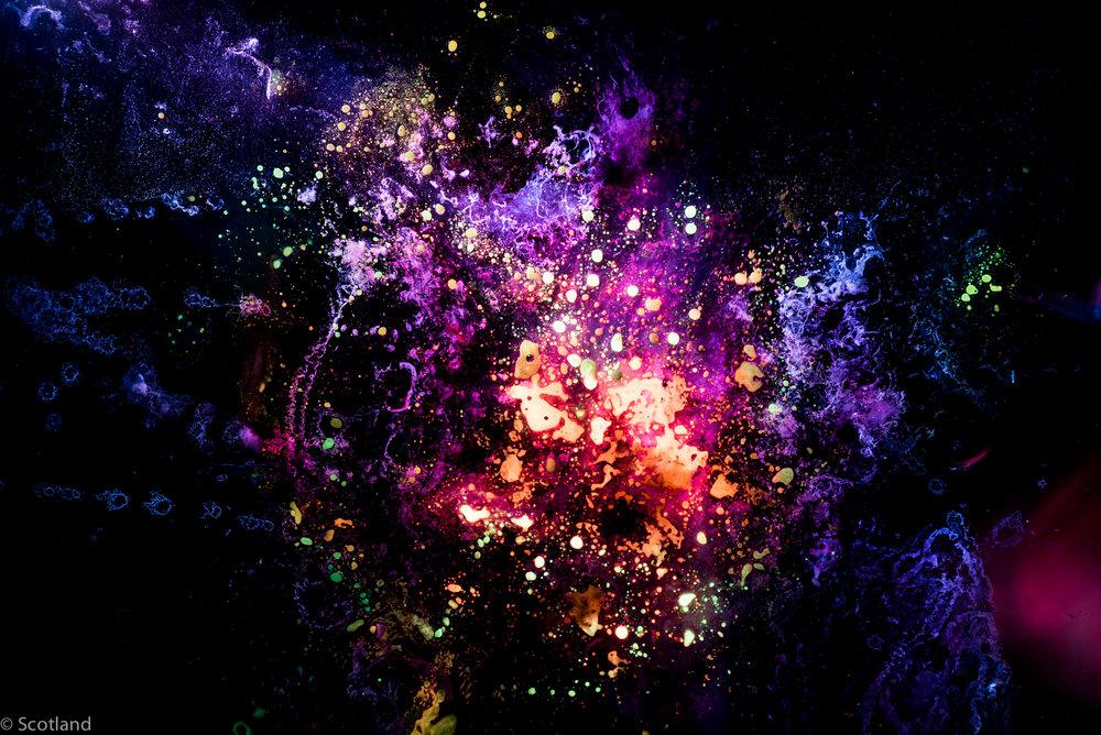 micro_cosmos_Scotland-6.jpg