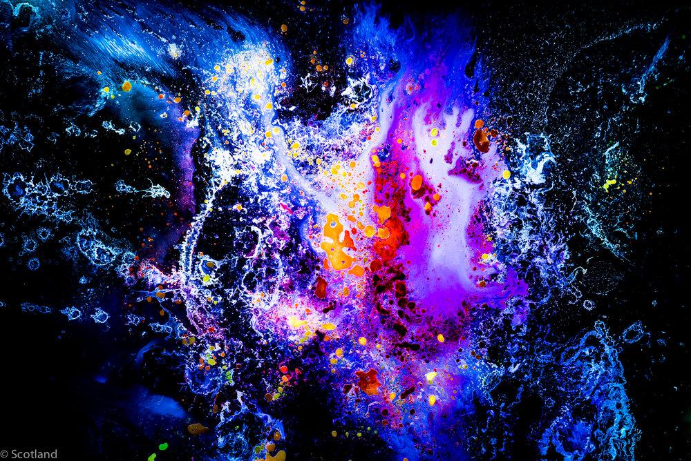 micro_cosmos_Scotland-9.jpg