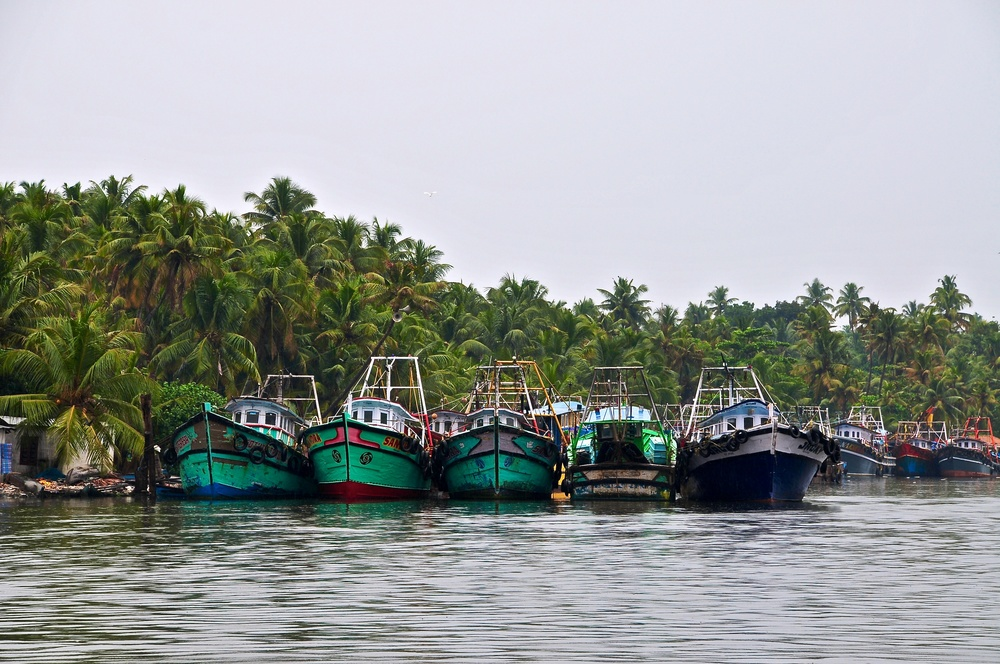 Rice boats docked at a river bank within the vast system of rivers reaching west from Kerala, India.