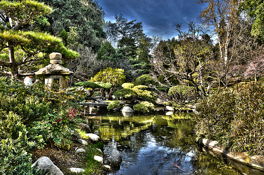 The Japanese Garden at the Huntington Library Botanical Gardens, San Marino CA.