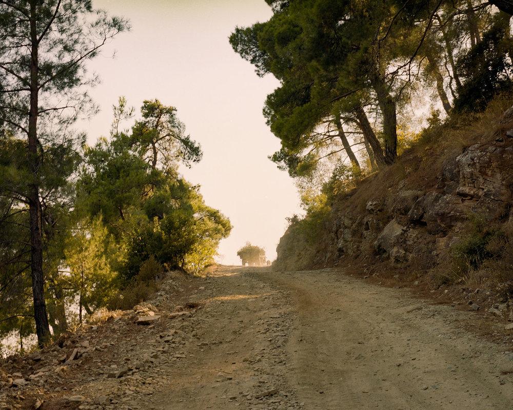2012 turkey tractor EPSON.jpg