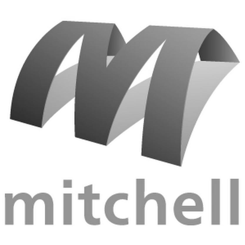 Mitchell International.png
