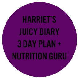 3 Day Plan with Nutrition Guru