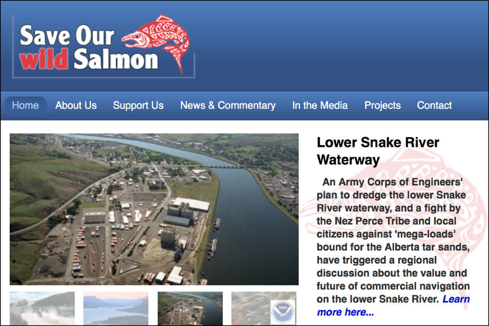 Save Our Salmon Website