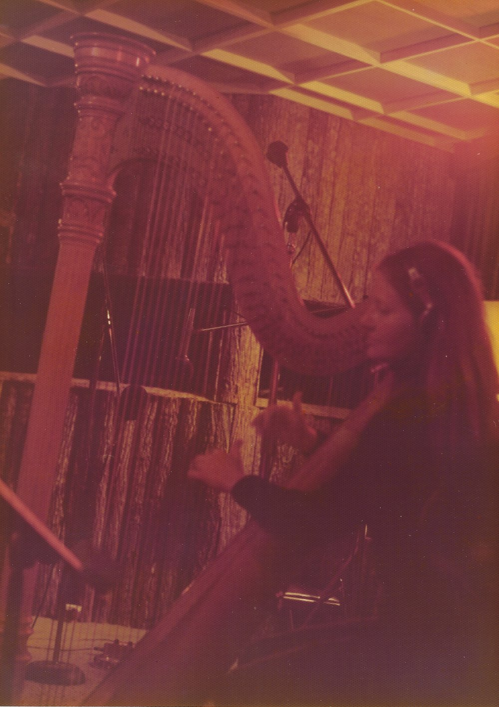 Cindy Reynolds - harp.jpeg